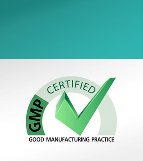 CGMP Contract Manufacturing
